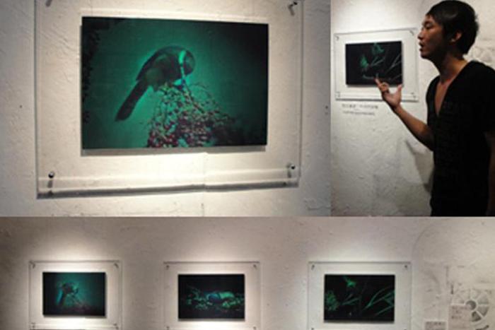 全像實驗室-立體全像與生態藝術創作~「鳥」視界